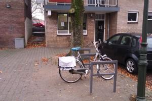fietsnietjes